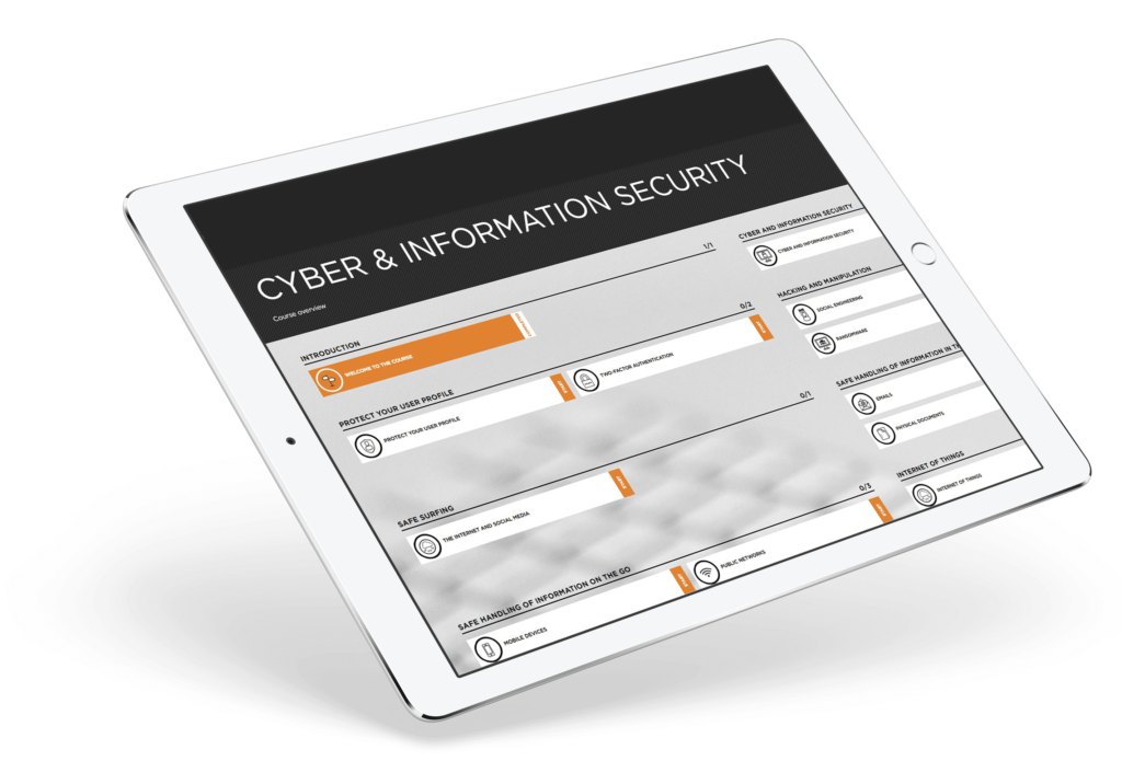 cyber and infomation security